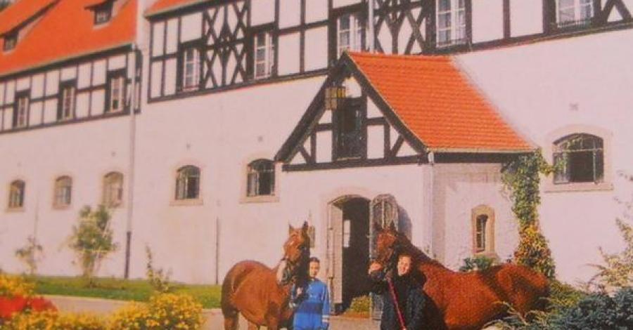 Stadnina koni w Książu ... - zdjęcie
