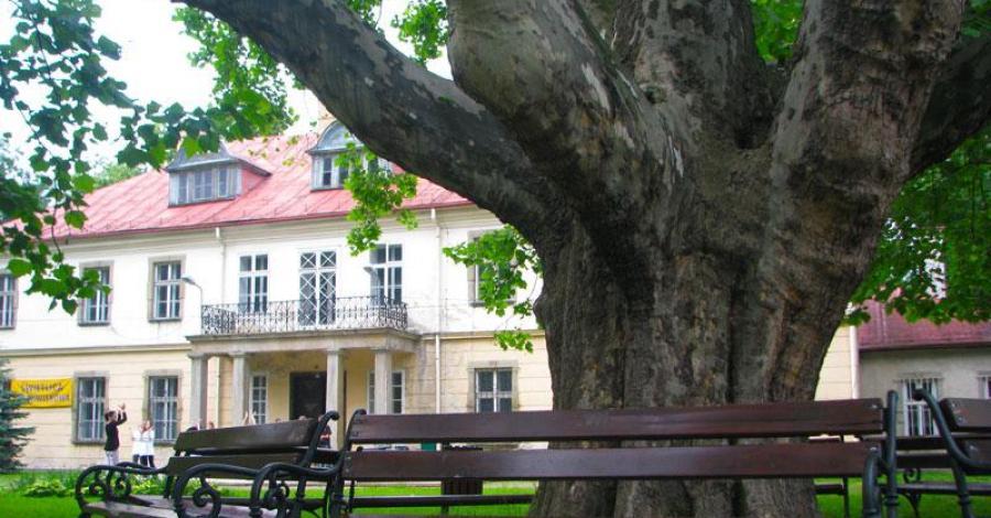 Pałac w Kozach - zdjęcie