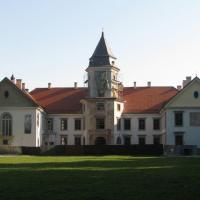 Zamek dzikowski w Tanobrzegu
