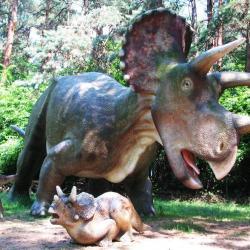 Rodzinny Park Atrakcji w Rybniku Kamieniu