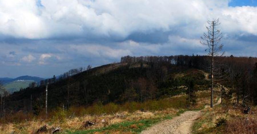 Dwa dni w Beskidzie Małym - Magurka i Chrobacza - zdjęcie