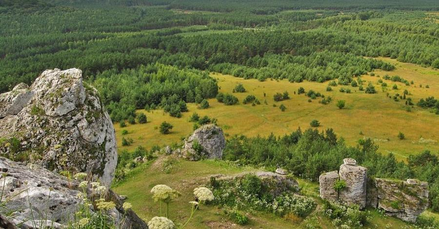 okolice Olsztyna k. Częstochowy (Sokole góry, Olsztyn, kielniki, góry towarne)