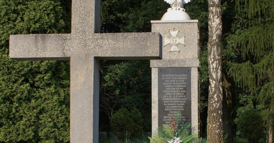 Bitwa Wyrska pod Wyrami i Gostyniem - zdjęcie