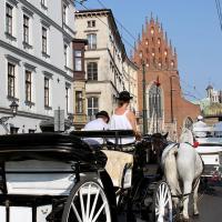 Dorożka w Krakowie