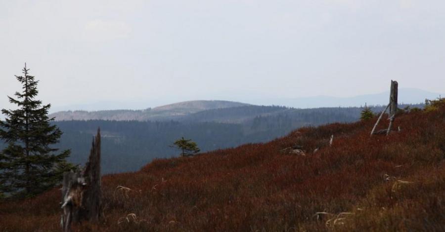 Góry Bialskie - Rudawiec - zdjęcie