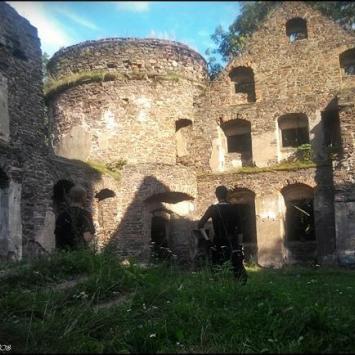zamek w świnach, Dominik Dobros
