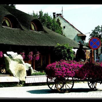 Żywiec-Karczma, Vincci