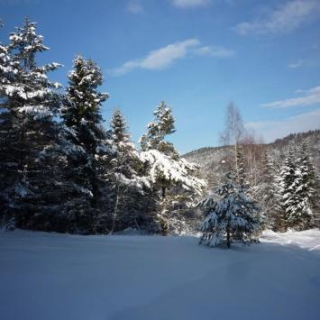 Zimowy Beskid Niski - zdjęcie