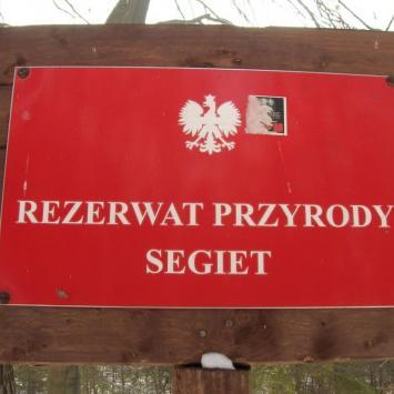 Rezerwat Segiet czyli między rosołem a drugim daniem...
