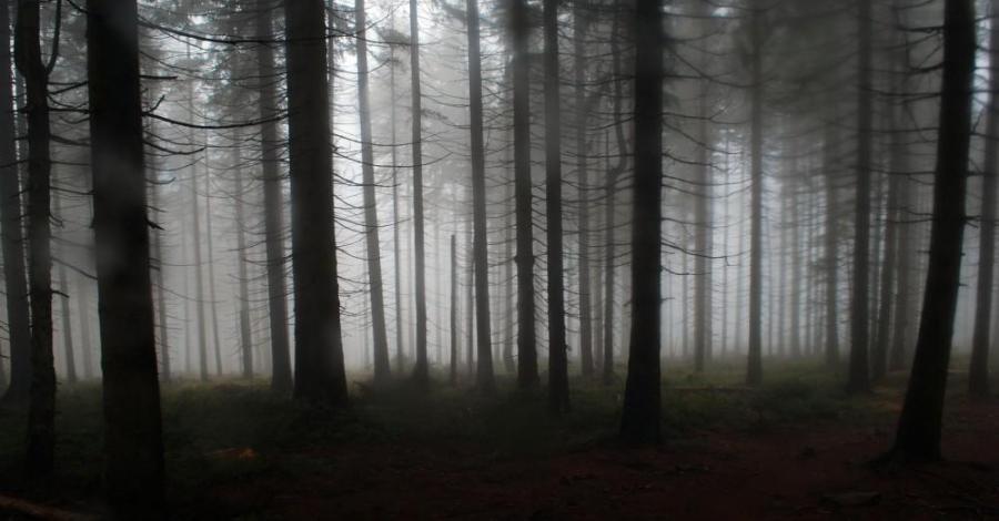 Barania Góra jesiennie - zdjęcie
