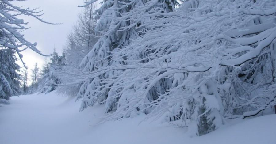 Góry Bystrzyckie - zdjęcie
