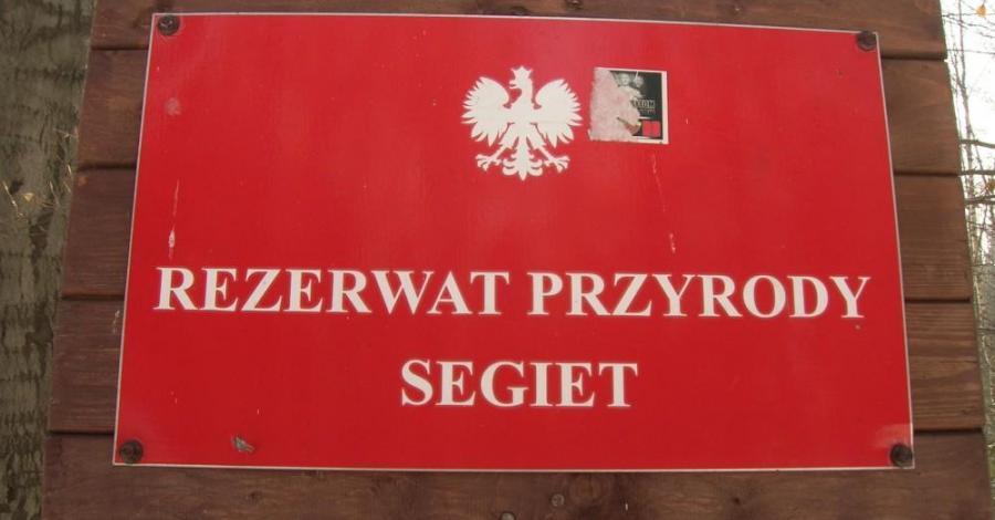 Rezerwat Segiet czyli między rosołem a drugim daniem... - zdjęcie