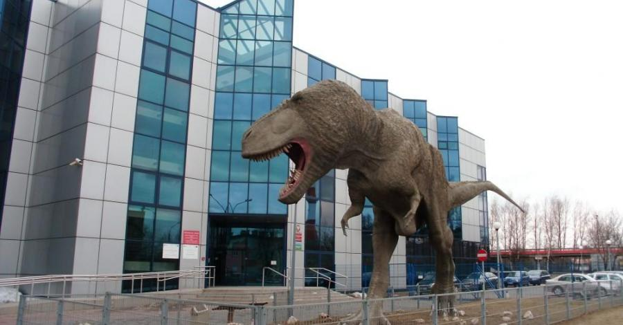 Muzeum Nauk o Ziemi i Dinozaur w Sosnowcu - zdjęcie