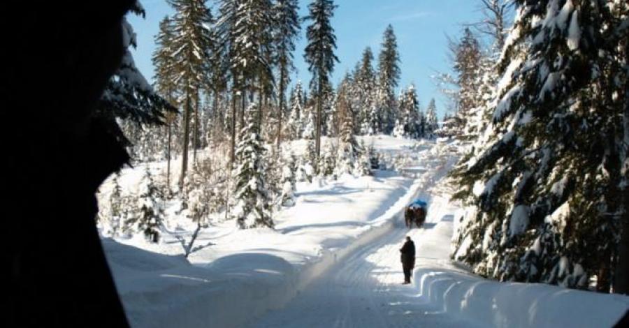 Trasy biegowe na Kubalonce - zdjęcie