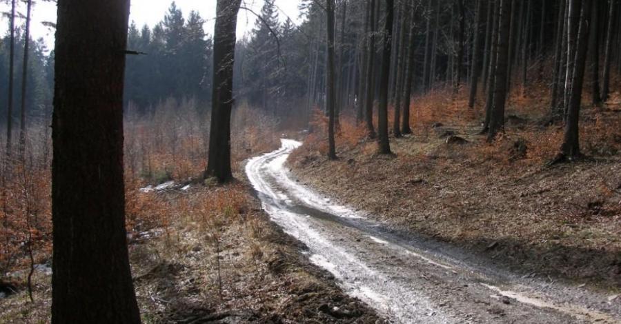 Góry Bardzkie - zdjęcie