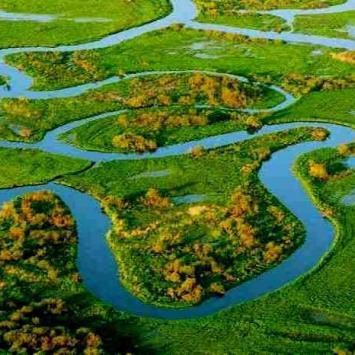 Dolina Biebrzy- raj na podlaskiej ziemi. - zdjęcie