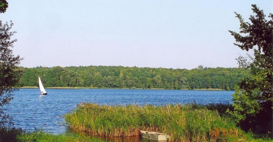 Jezioro Lusowskie - zdjęcie
