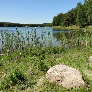 Jezioro Czarne w Niesiołowicach