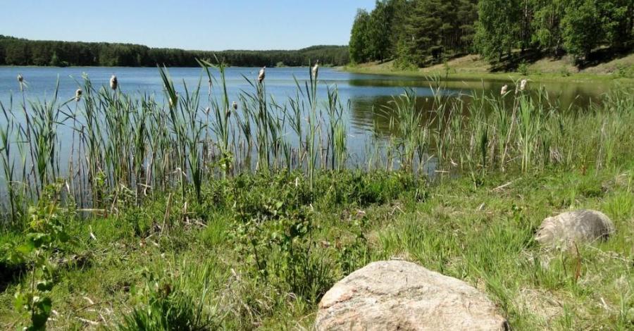 Jezioro Czarne w Niesiołowicach - zdjęcie