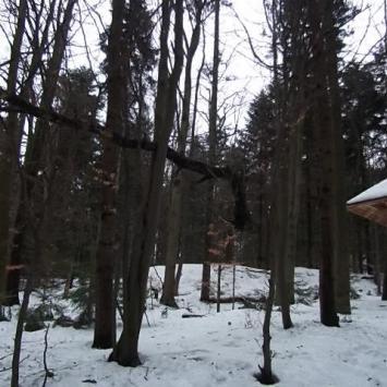 22 luty2012r. Nowa Słupia - Łysiec - Drogosiowa - zdjęcie