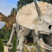 Dinozaury w Ochabach