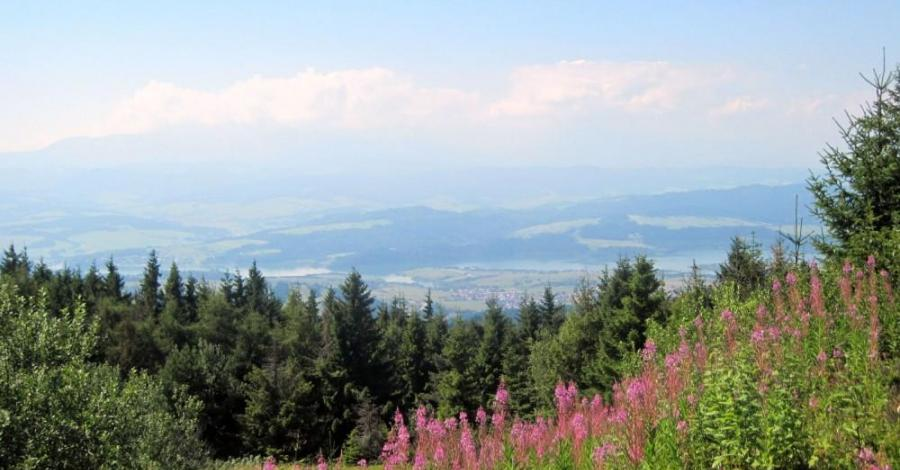 Gorczański Park Narodowy - zdjęcie