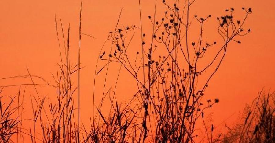 jeden dzień Beskidzie Śląskim - zdjęcie