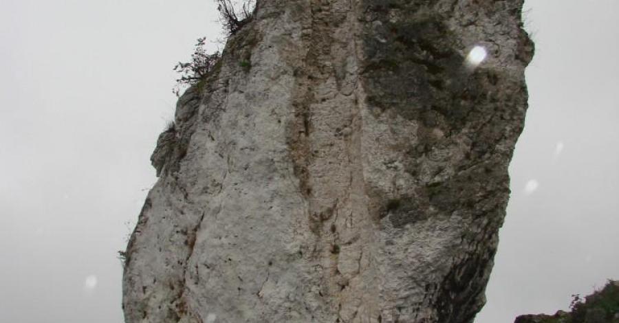 Jura w strugach deszczu czyli niedzielny spacer Mirów- Bobolice - zdjęcie