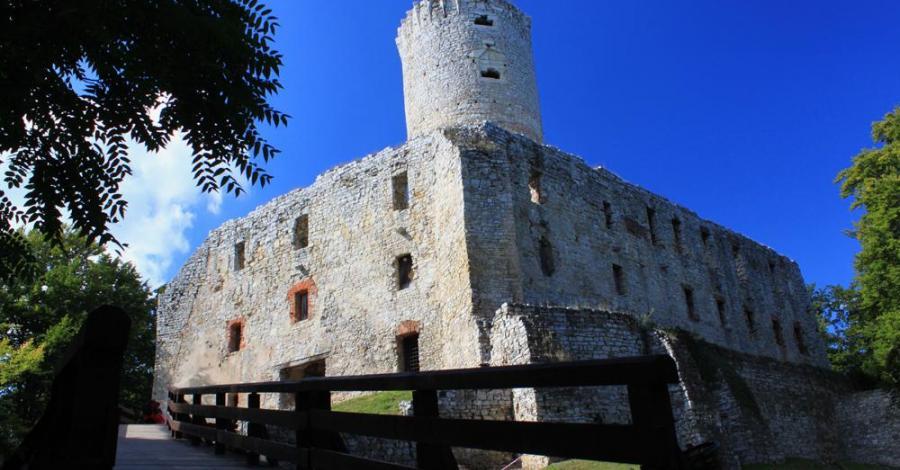 Zamek Lipowiec w Babicach - zdjęcie