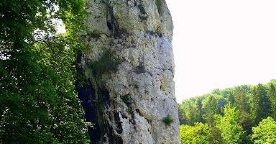 szlakiem orlich gniazd - zdjęcie