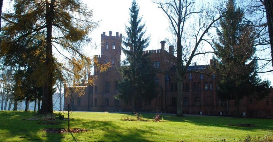 Pałac w Sorkwitach - zdjęcie