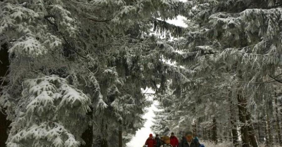 Czantoria Wielka - Cisownica - zdjęcie