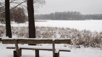 Zielona w Kaletach i Bibiela - Leśniczówki Donnersmarcków - zdjęcie