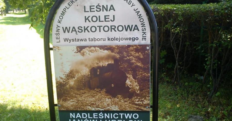 Skansen Kolei Leśnej w Janowie Lubelskim, Anna Piernikarczyk