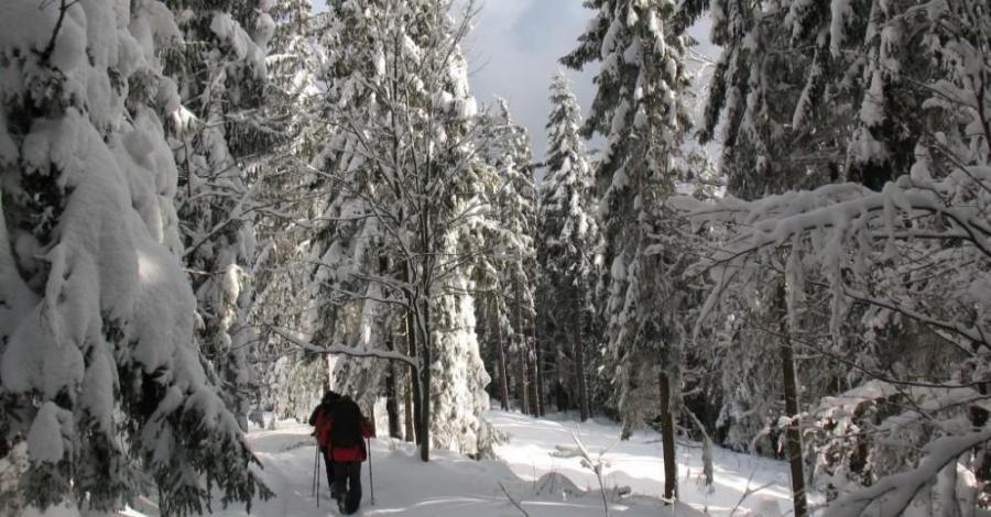 Wyciągi narciarskie w Gorcach - zdjęcie