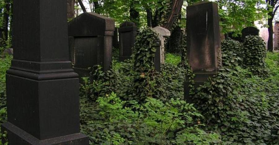 Cmentarz Żydowski w Mikołowie - zdjęcie