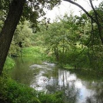Spływ kajakowy rzeką Wel - zdjęcie