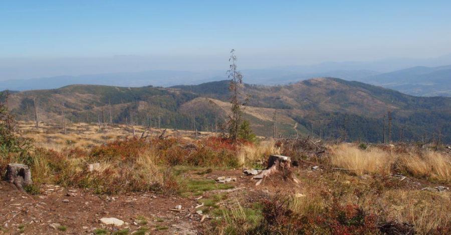 Barania Góra w Beskidzie Śląskim - zdjęcie