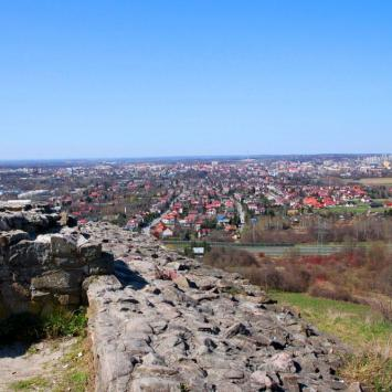 Zamek w Tarnowie - zdjęcie