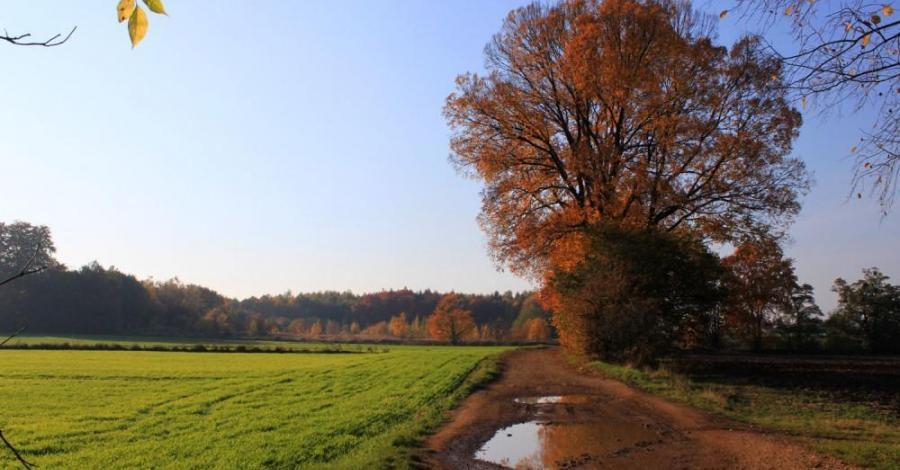 Rezerwat Segiet - zdjęcie