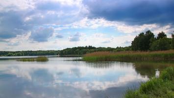 Ogród Śląski w Świerklańcu i Jezioro Nakło Chechło - zdjęcie