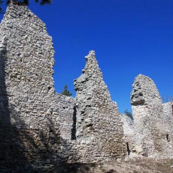 Zamek w Bydlinie
