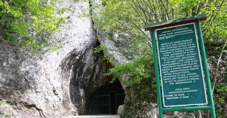 Jaskinia Nietoperzowa, Anna Piernikarczyk
