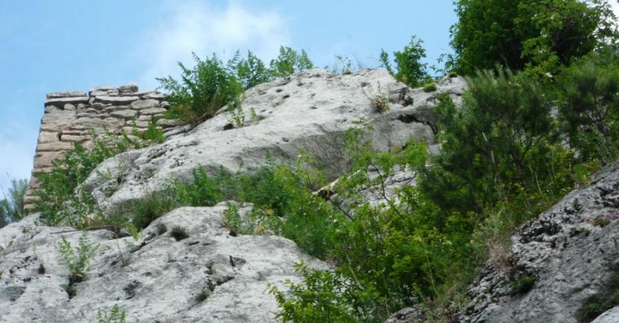 Ruiny zamku w Ryczowie, mokunka