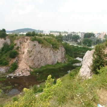 Rezerwat Kadzielnia w Kielcach, mokunka