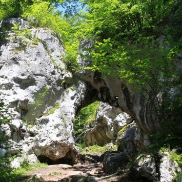 Złoty Potok - Brama Twardowskiego