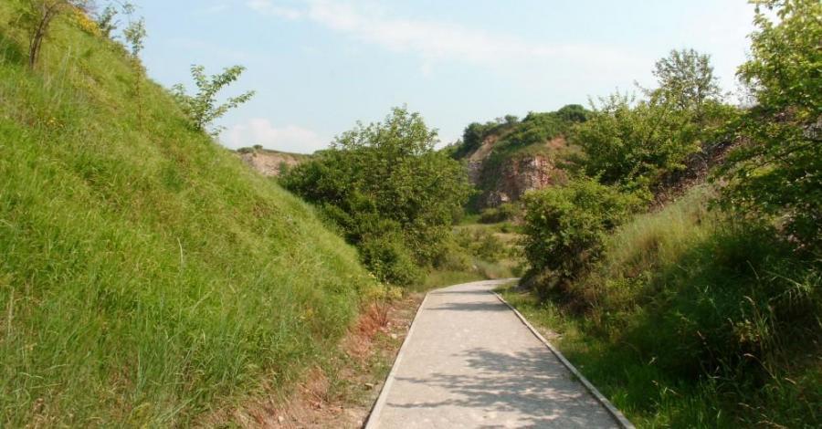 Rezerwat Wietrznia w Kielcach, mokunka