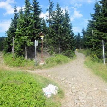 Sowia Przełęcz w Karkonoszach
