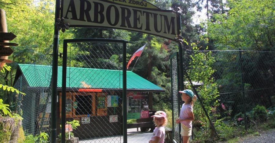 Arboretum w Lądku Zdroju - zdjęcie