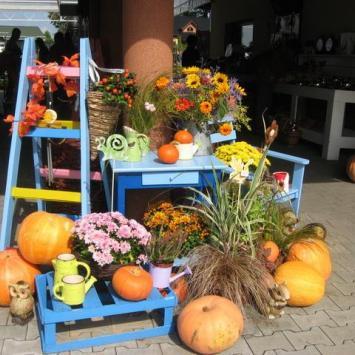 Kolory września w Goczałkowicach Zdroju - zdjęcie